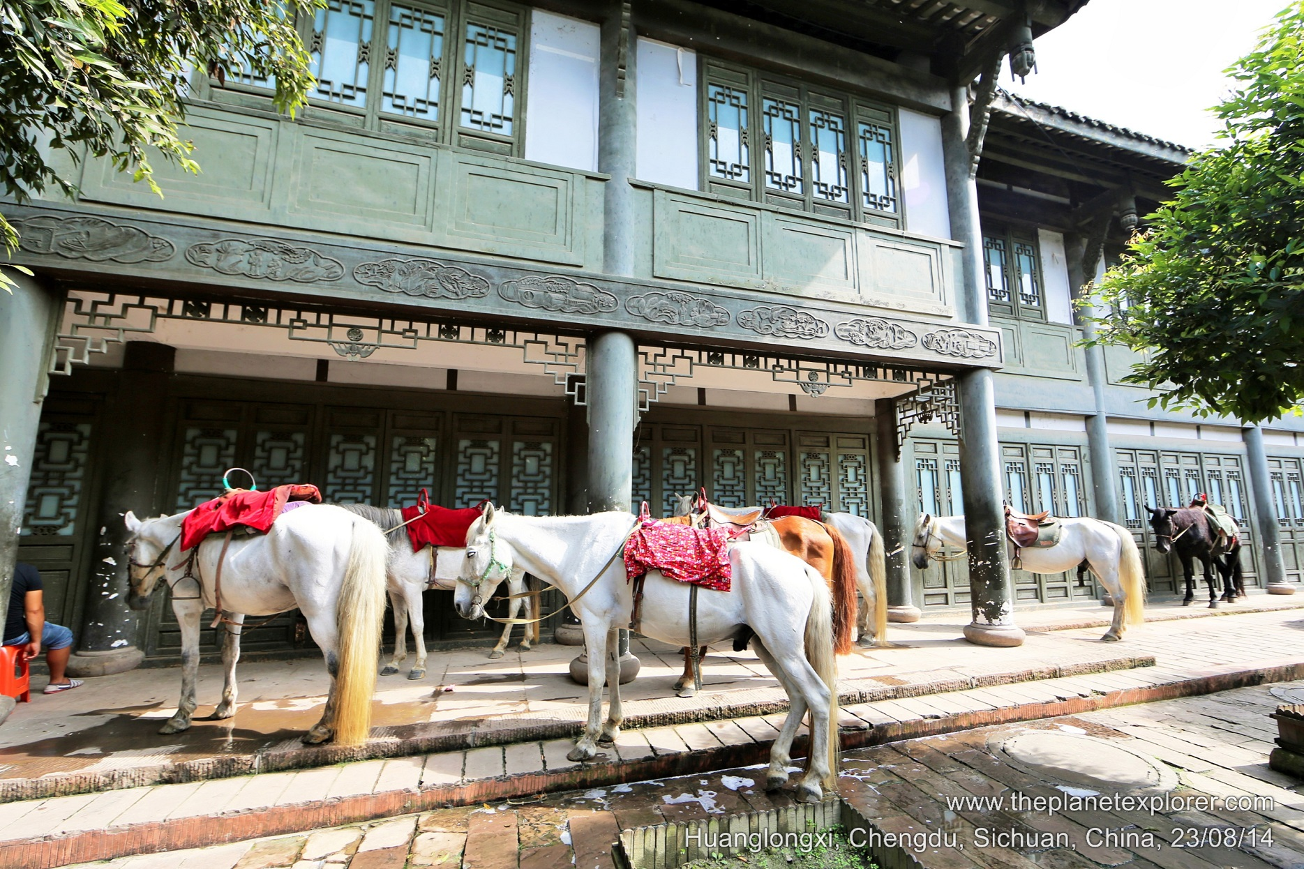 2014-08-23_1558_china_sichuan_chengdu_huanglongxi_horses_lr_nw