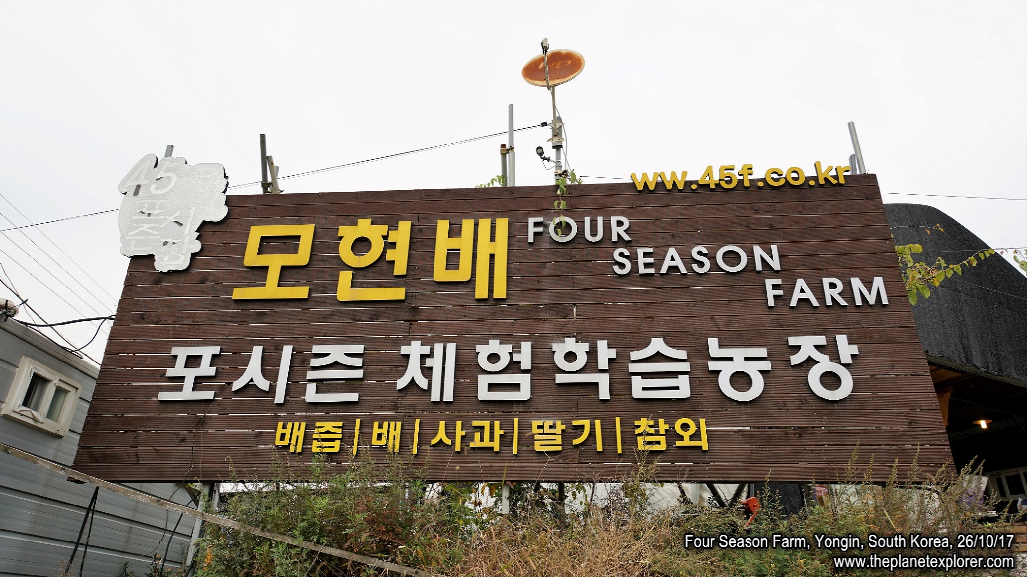 20171026_1441_South Korea_Yongin_Four Season Farm_DSC05907_Sony a7R2_LR_@www