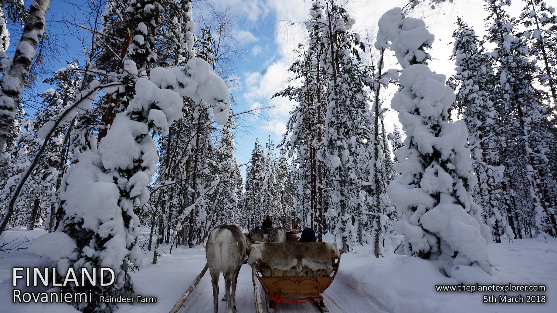 20180305_1136_Finland_Rovaniemi_Raindeer Farm_DSC09436_Sony a7R2_LR_@www
