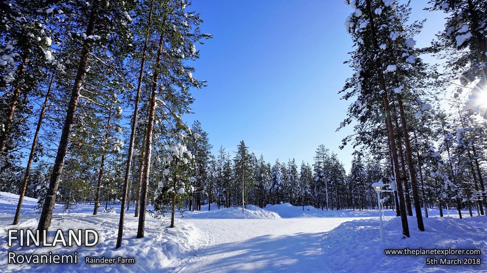 20180305_1315_Finland_Rovaniemi_Raindeer Farm_DSC09471_Sony a7R2_LR_@www