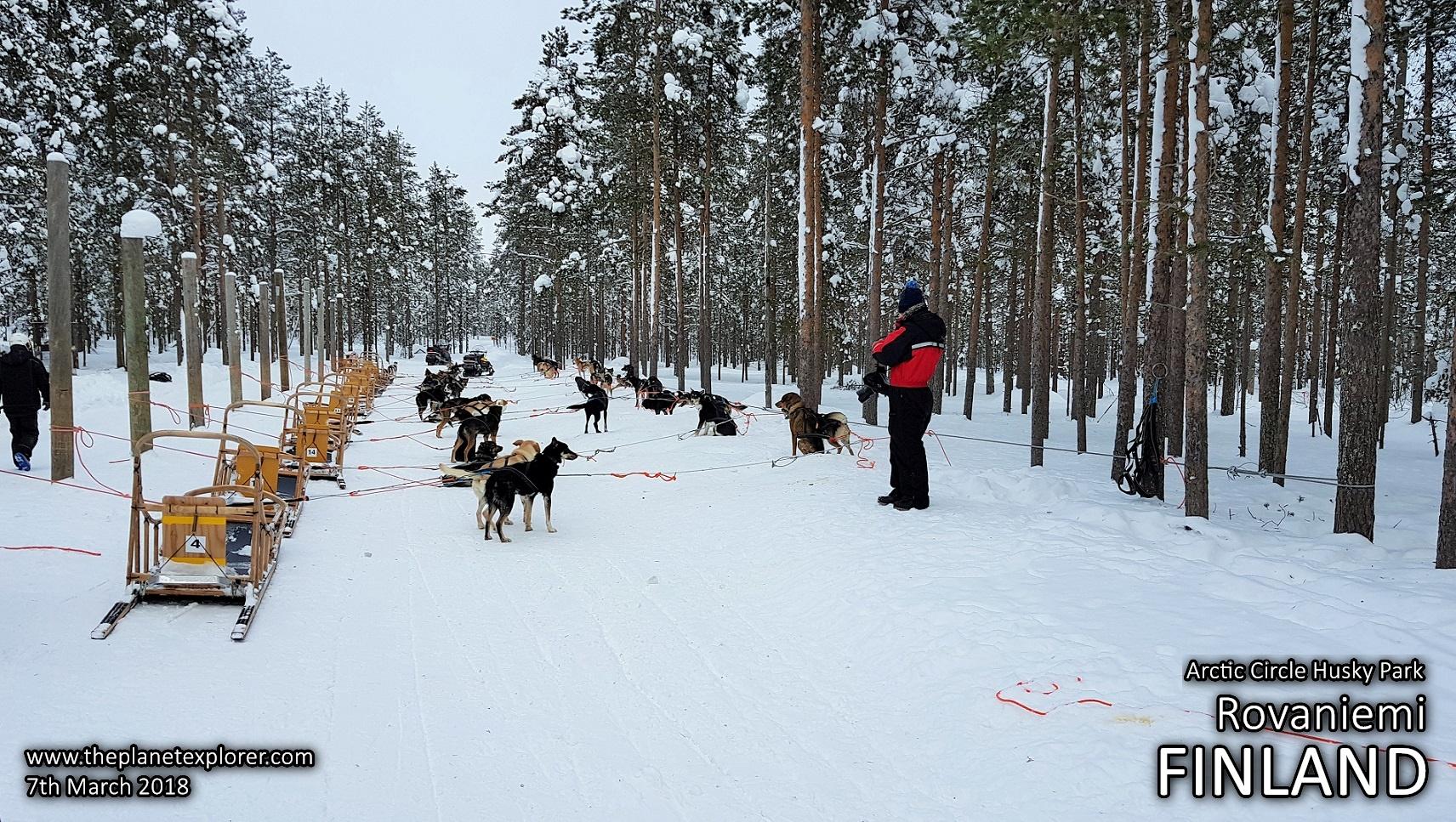 20180307_1305_Finland_Rovaniemi_Arctic Circle Husky Park_Samsung Note 8_LR_@www
