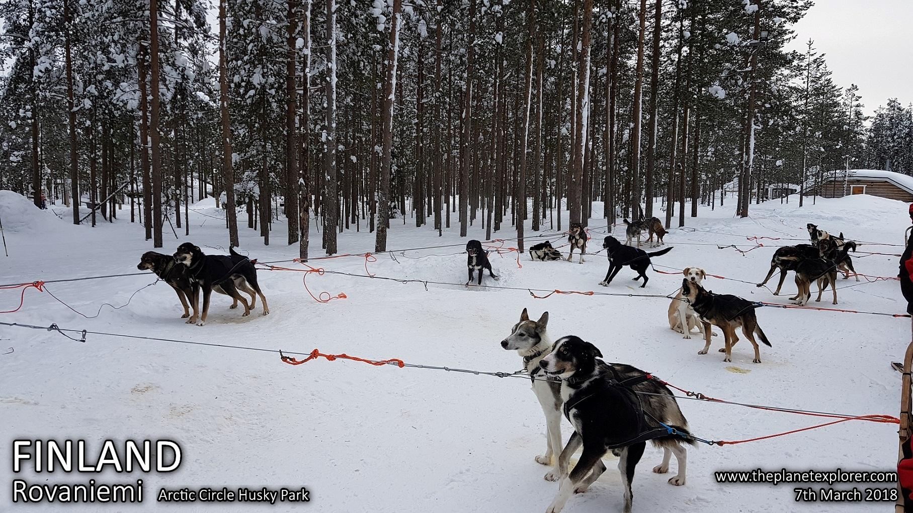 20180307_1311_Finland_Rovaniemi_Arctic Circle Husky Park_Samsung Note 8_LR_@www