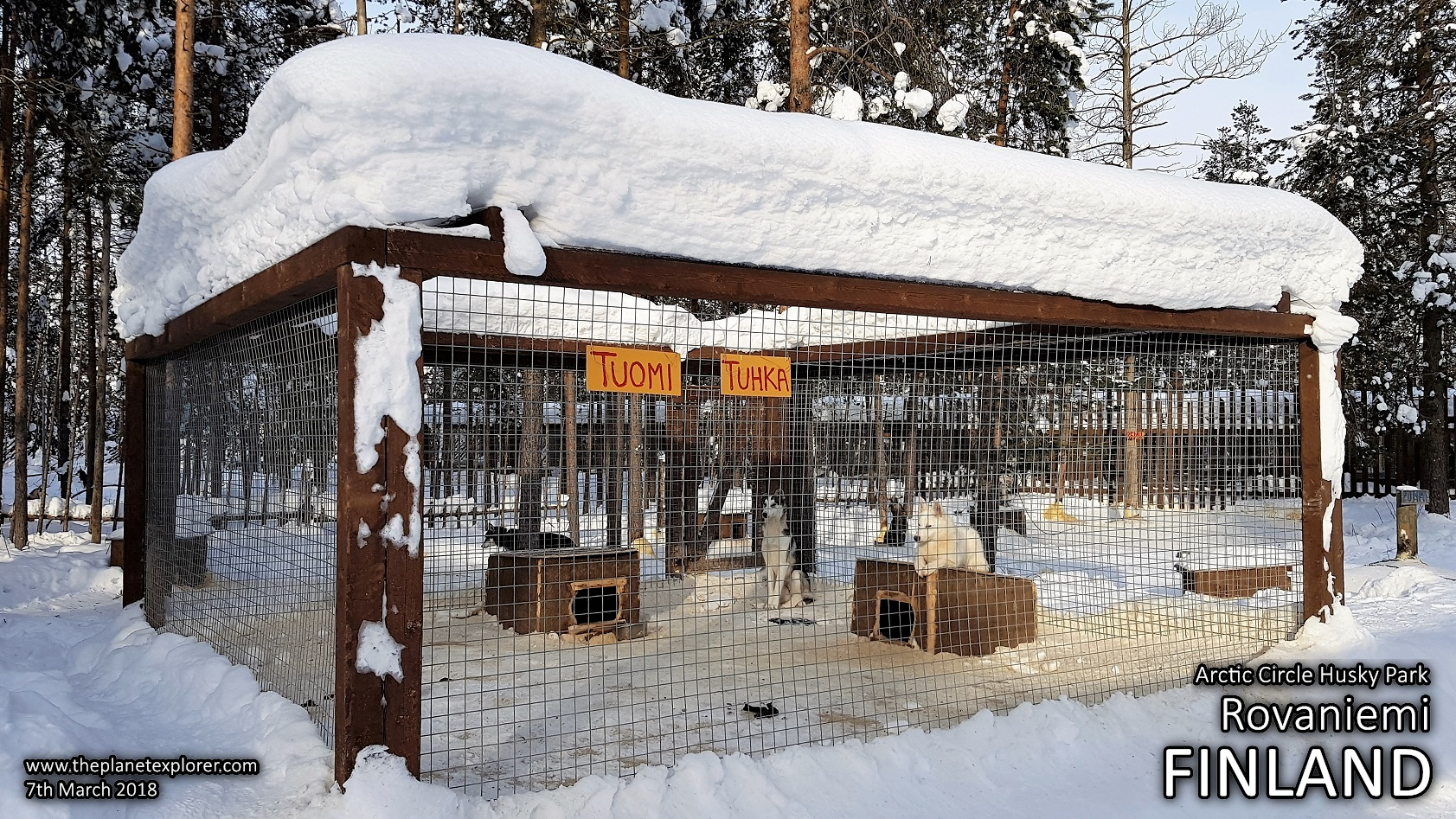20180307_1451_Finland_Rovaniemi_Arctic Circle Husky Park_Samsung Note 8_LR_@www